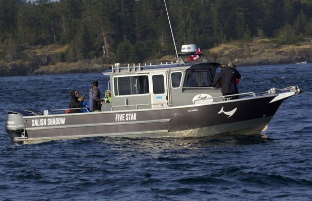 Five Star Whale Watchings boat, Salish Shadow on the water